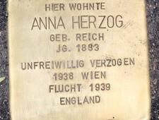 Stolperstein für Anna Herzog Foto: J.J. Kucek