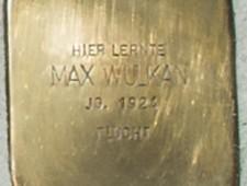 Max-Wulkan